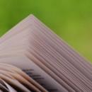 libro_abierto_sobre_fondo_verde_1368361_28917487